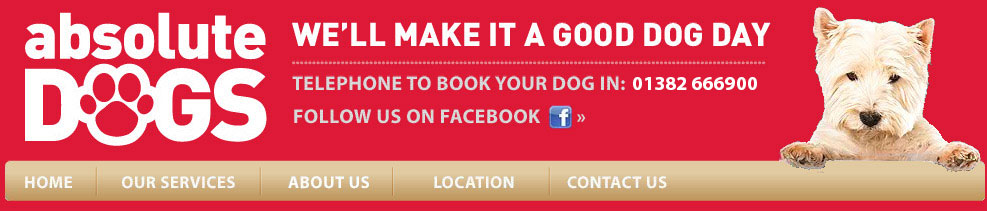 Absolute Dogs, 1 Mile From Glasgow Airport. Find Us On Facebook. Make it A Good Dog Day